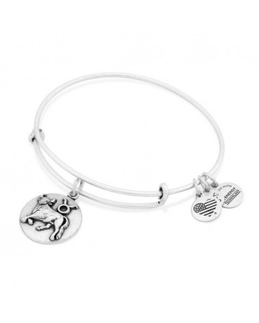PULSERA ALEX AND ANI A16EB59RS
