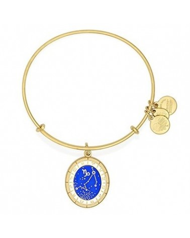 PULSERA ALEX AND ANI CAPRICORNIO A15EB61YG