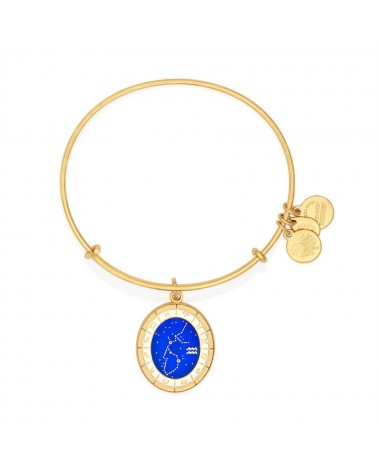 PULSERA ALEX AND ANI ACUARIO A15EB59YG