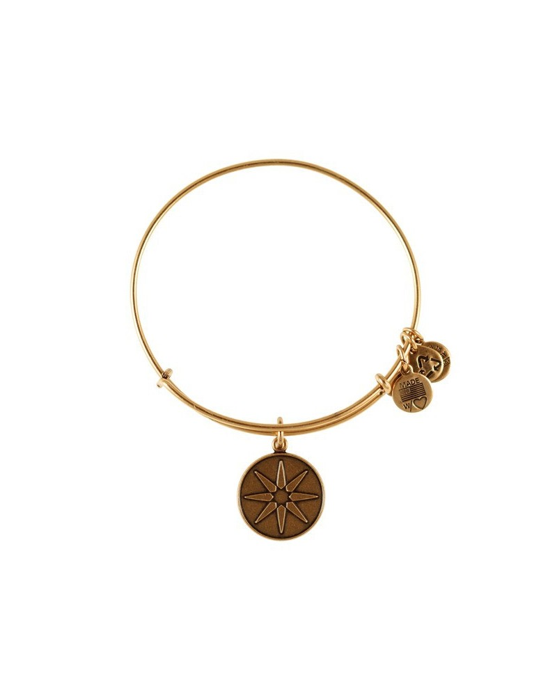 PULSERA ALEX AND ANI A12EB08RG