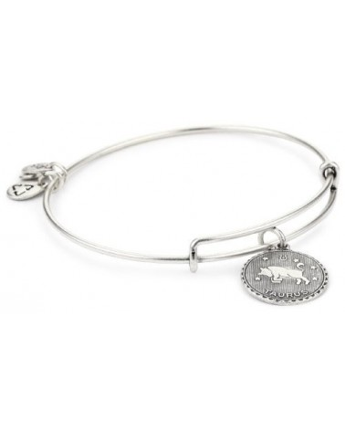 PULSERA ALEX AND ANI TAURO A07EB40TARS