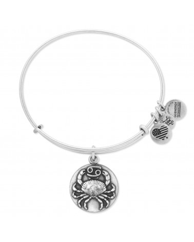 PULSERA ALEX AND ANI CANCER